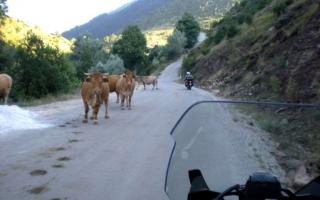 motoexplora-viaggi-in-moto-grecia-agosto-2010-17