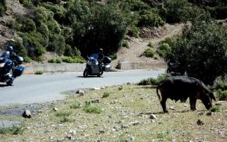 motoexplora-viaggio-in-sardegna-maggio-2011-19
