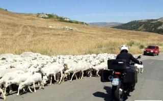 motoexplora-viaggio-in-sicilia-maggio-2012-10