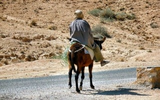motoexplora-tunisia-2010-04-30