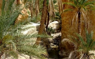 motoexplora-viaggio-in-tunisia-aprile-2013-17