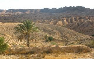 motoexplora-viaggio-in-tunisia-capodanno-2013-11