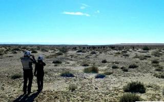 viaggio-in-tunisia-capodanno-2014-11