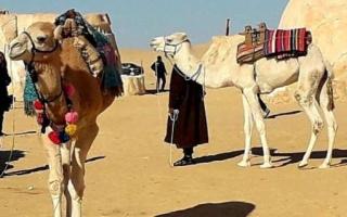 Motoexplora_capodanno_Tunisia_2020-24